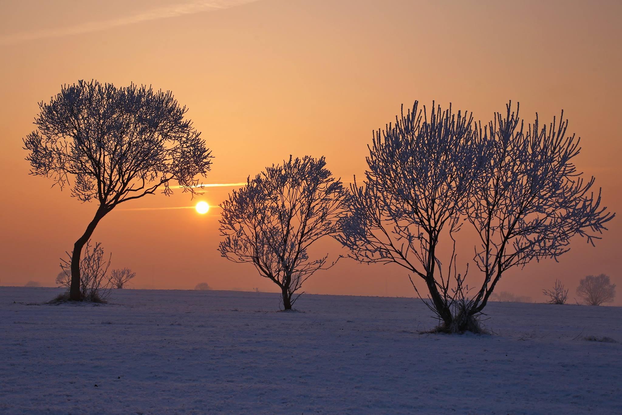Szavak nélkül – néhány kép Székelyföldről – Fodor István fotói