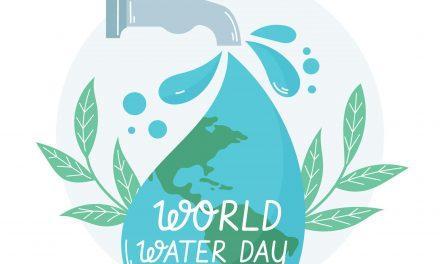 Életünk, a víz – Érték! Becsüld meg!