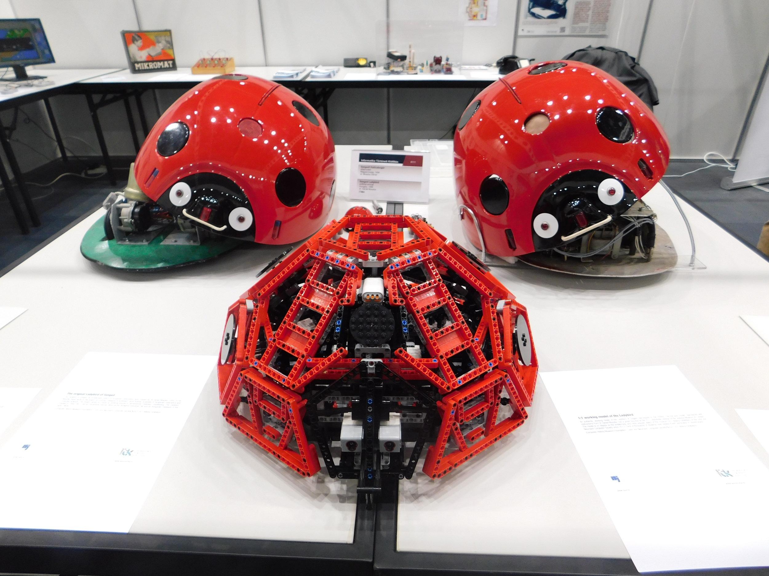 A magyar robotkatica is részt vett a World Robot Olympiadon