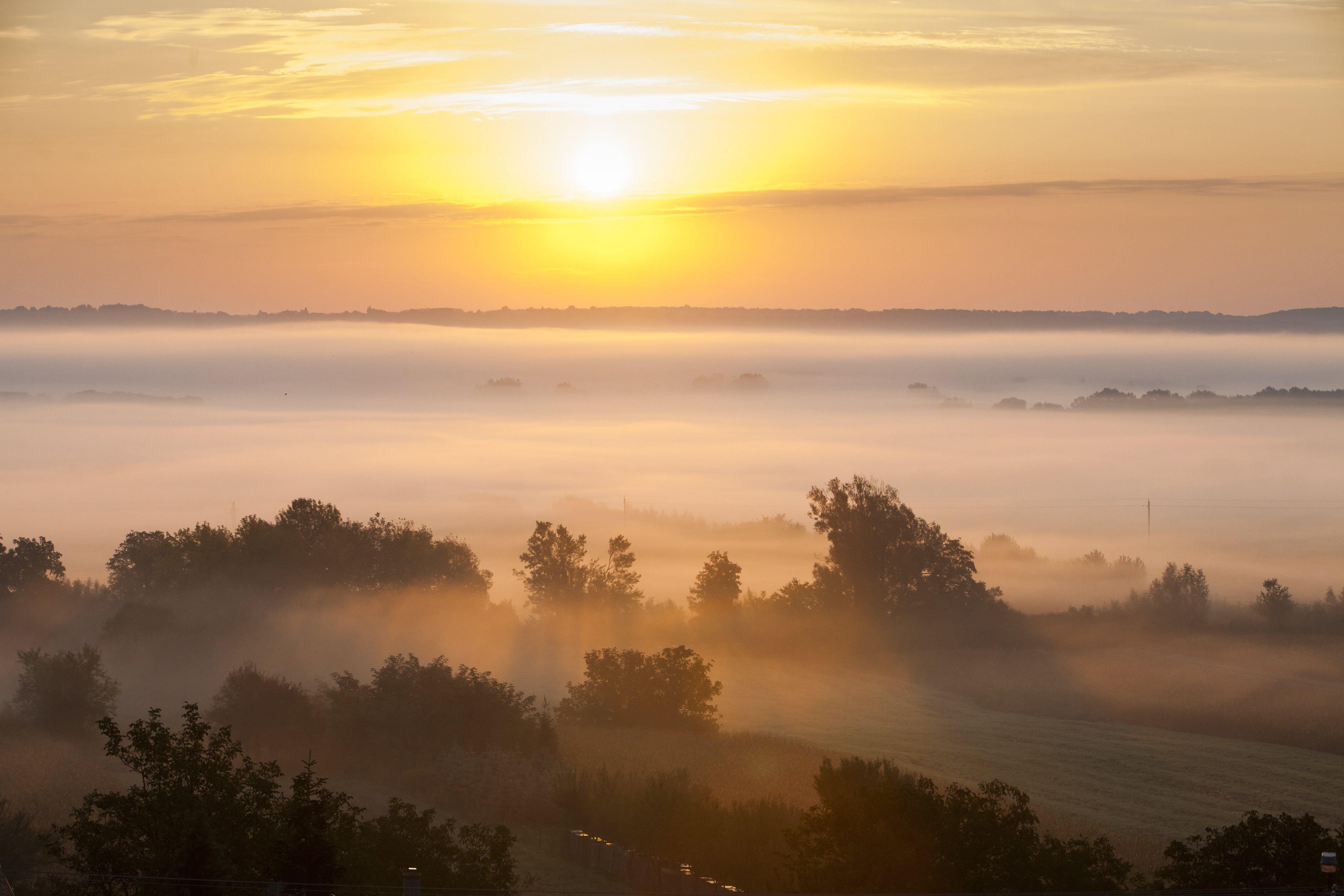 Hajnali köd Zalaszentbalázs határában