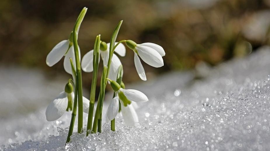 Áprily Lajos: Tavaszodik