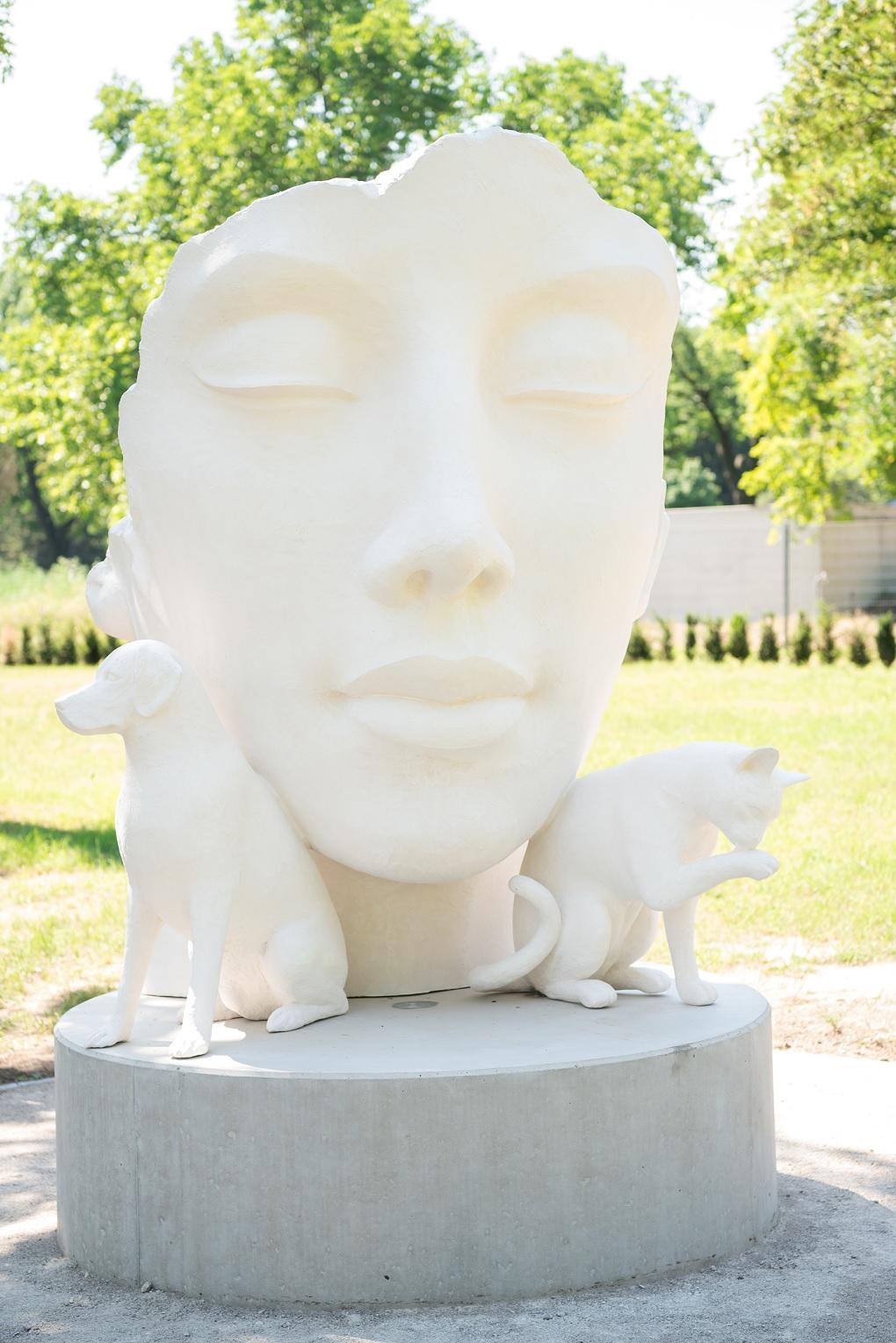 Közös temető házi kedvenceknek és gazdáiknak Bécsben