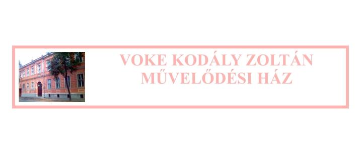 KEZDŐ JOBB ÉS BAL AGYFÉLTEKÉS RAJZTANFOLYAM