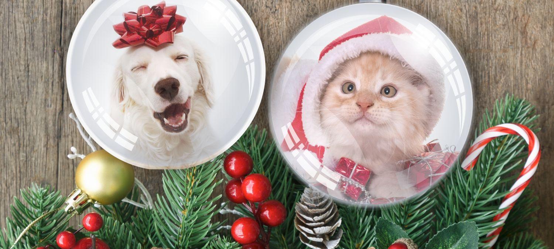 8. Menhely Karácsony