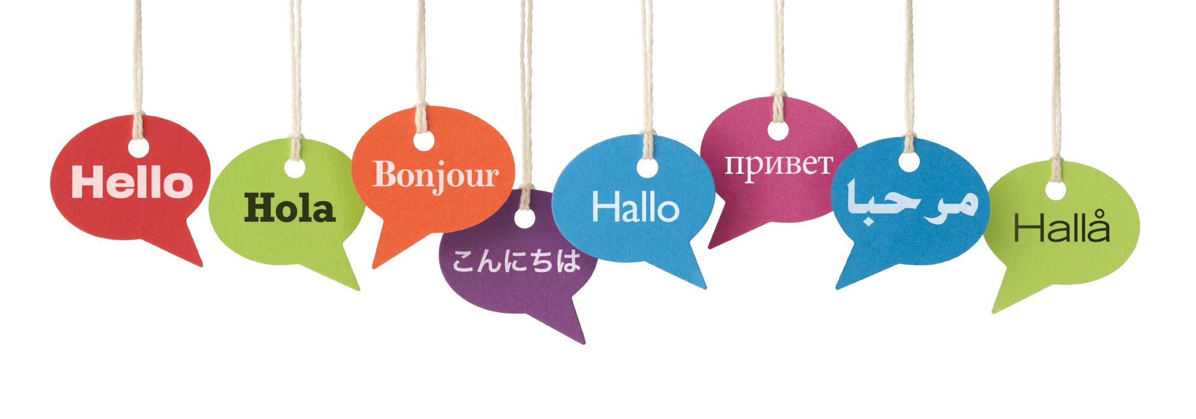 Dialóg Nyelviskola és Vizsgacentrum Nagykanizsa hirdetése