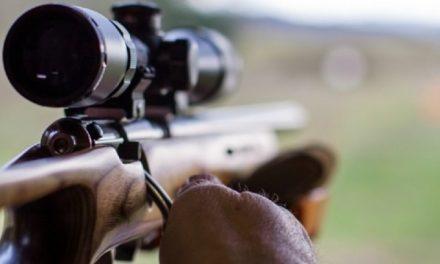 Szegedi találmánnyal az afrikai orvvadászok ellen