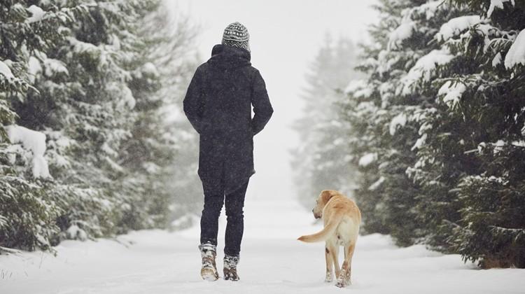 A séta egészségügyi előnyei