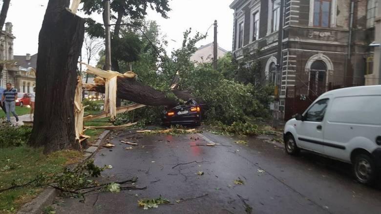 Vihar – Romániában csaknem hétszáz fa dőlt az utakra, újabb halálos áldozat