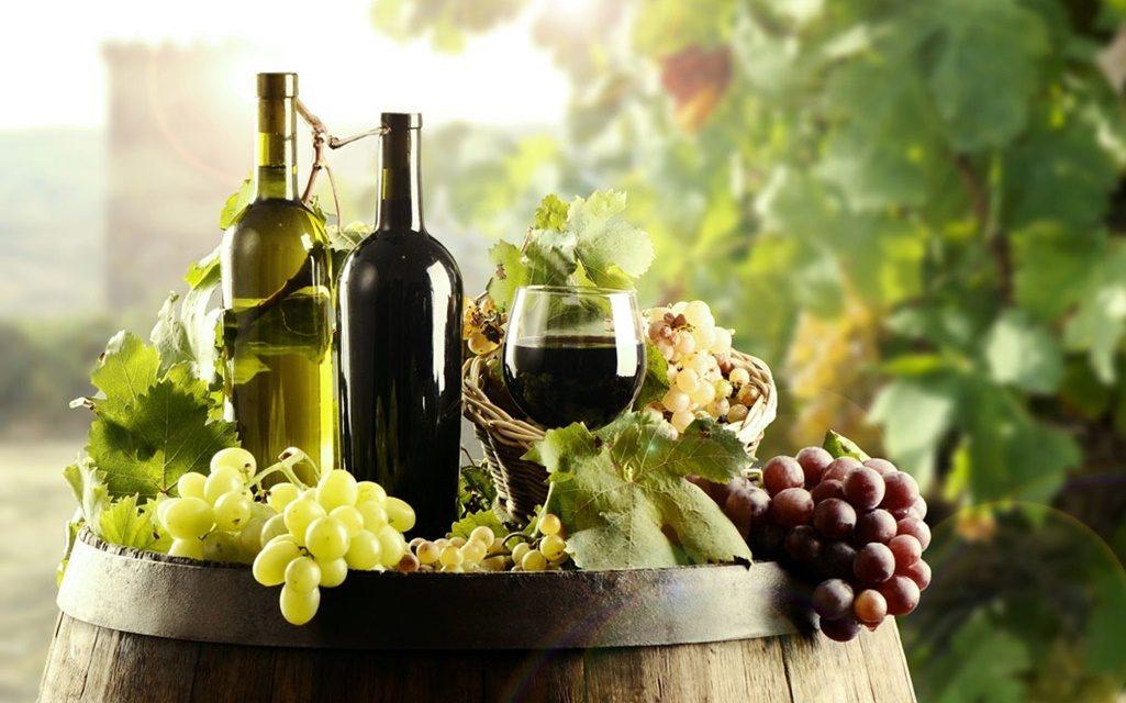 Élmények és borok felfedezésében is segít a Pincenavigátor